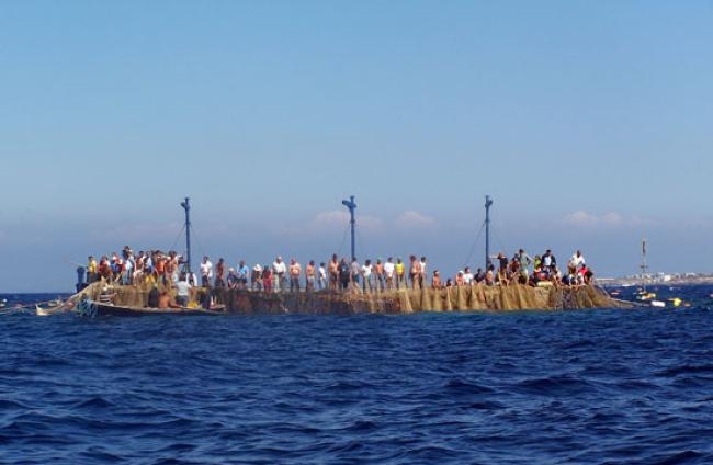 mattanza favignana tonijnvangst