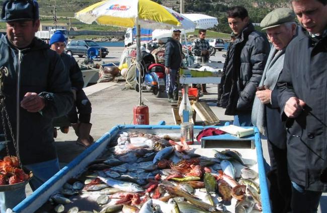vismarkt Favignana